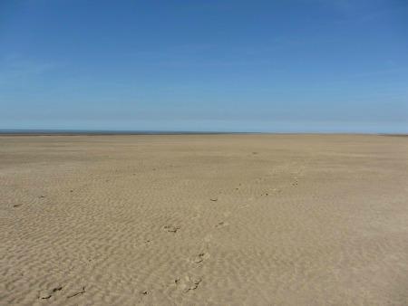 Are Dogs Allowed On Hunstanton Beach