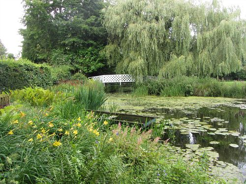 The Monet Pond at Gooderstone Water Gardens
