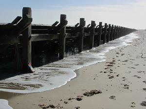 Wooden sea defences