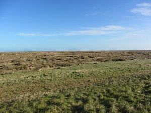 The salt marshes towards Stiffkey