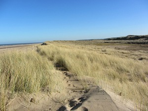 The sand dunes on the Norfolk Coast Path