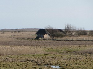 Thatched hide at NWT Cley Marshes