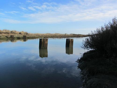 Water's edge at Stiffkey