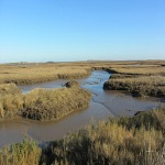 The creeks along the Norfolk Coast Path