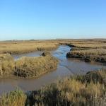 The creeks along the Norfolk Coast Path