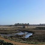 Water meadows near Thornham