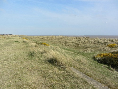 The dunes at Caister