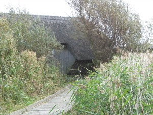 NWT Cley Marshes hide
