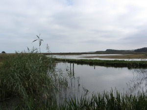 NWT Cley lagoons