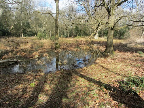 Pingo Ponds along the Peddars Way