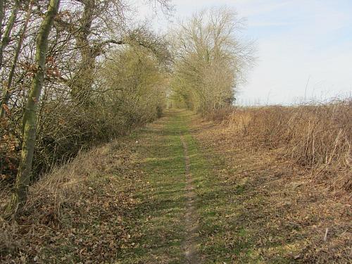 The arrow straight tracks along the Peddars Way