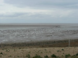 RSBP Snettisham beach
