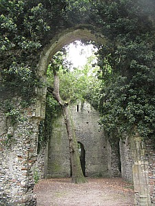 The old church ruins which you can walk to from Big Sky Cottages