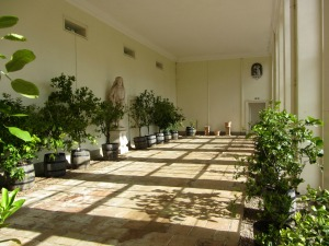 Orangery at Blickling Hall