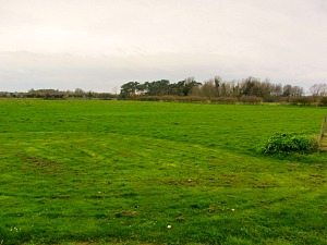 The dog friendly field adjacent to the hotel, perfect for your dog!
