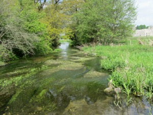 River Nar at Castle Acre