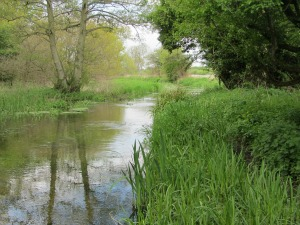 River Nar Chalk Stream at Castle Acre Priory