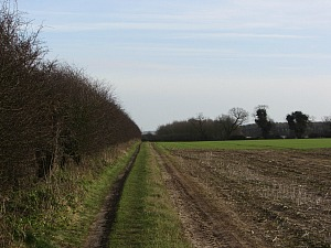 Open countryside around Castle Acre