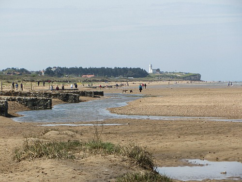 Dog friendly beaches in Norfolk