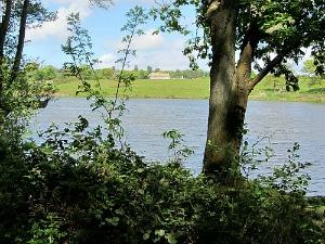 Felbrigg Hall lake