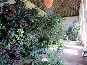 Felbrigg Hall Orangery