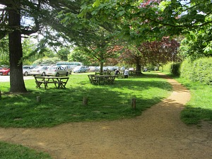Picnic tables at Felbrigg