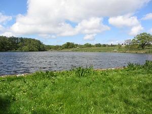 The lake at Felbrigg Hall