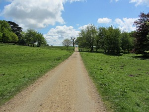 The easy tarmac road through Felbrigg Hall estate