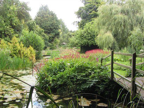 Beautiful views at Gooderstone Water Gardens