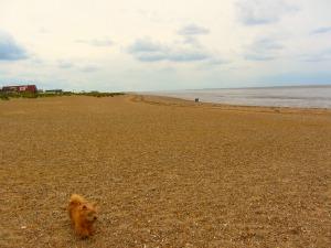 South beach at Heacham, Norfolk