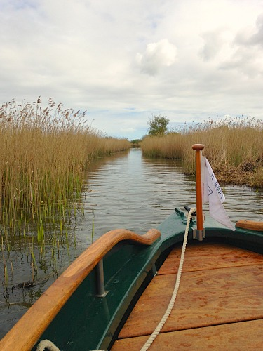 One of the many narrow channels on Hickling Broad.