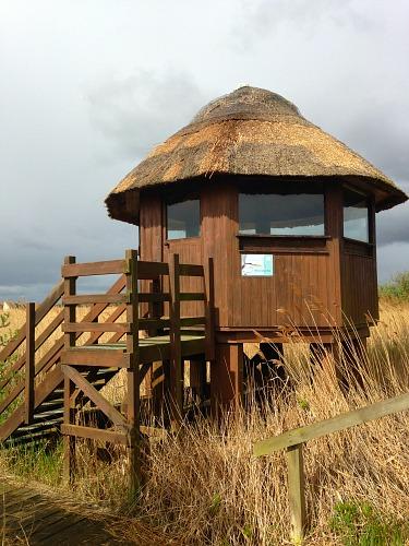 The observation hide at Hickling Broad