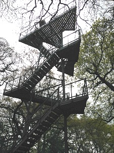 The 60ft watch tower at NWT Hickling Broad