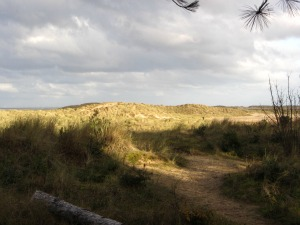 Holkham beach and sand dunes