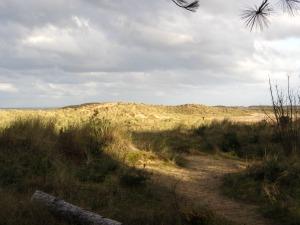 Holkham beach and sand dunes