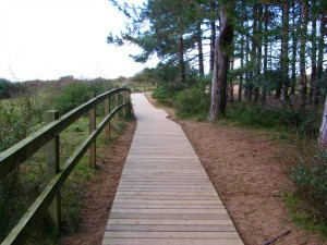 Holkham beach board walk towards beach