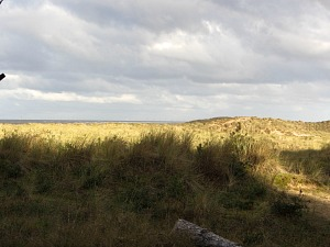 Holkham, Area of Outstanding Natural Beauty