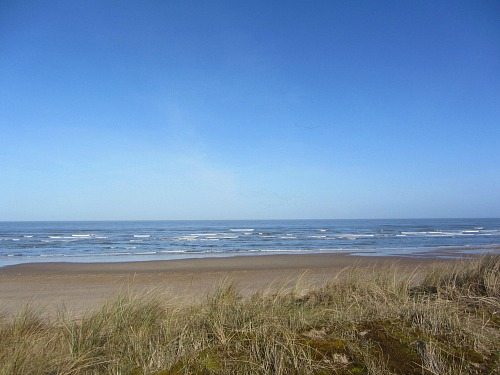 Walk along the beautiful North Norfolk Coast.  Holme Dunes