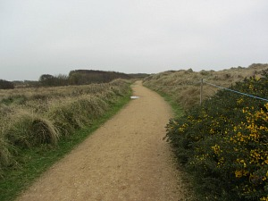 The roped off paths at Horsey Gap