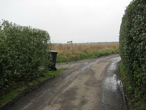 At Horsey Corner, turn left towards Brograve Drainage Mill