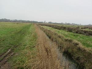 Dykes on the Horsey Windpump coastal walk