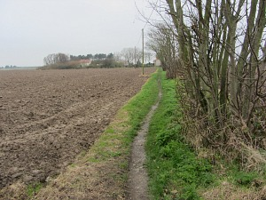 Walking towards Horsey Corner