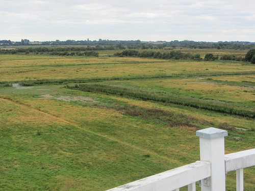 The far reaching views from the top of Horsey windpump.