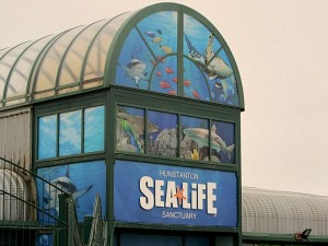 Hunstanton Sea Life Centre