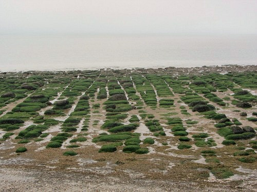 Symmetrical stones at Hunstanton Beach
