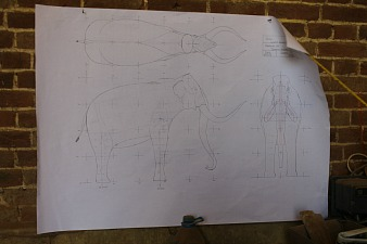 Scaled drawings for the building of the West Runton Mammoth model