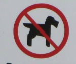 Dog restrictions on some beaches in Norfolk