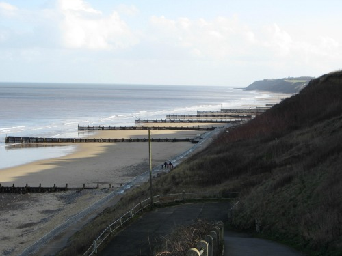 Is Overstrand Beach Dog Friendly