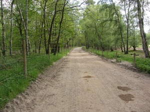The Peddars Way on the Pingo Trail