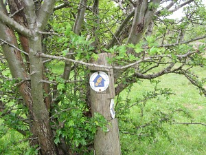 Pingo Trail sign
